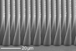 Cryogenic etching of silicon, courtesy of TU Braunschweig, Germany